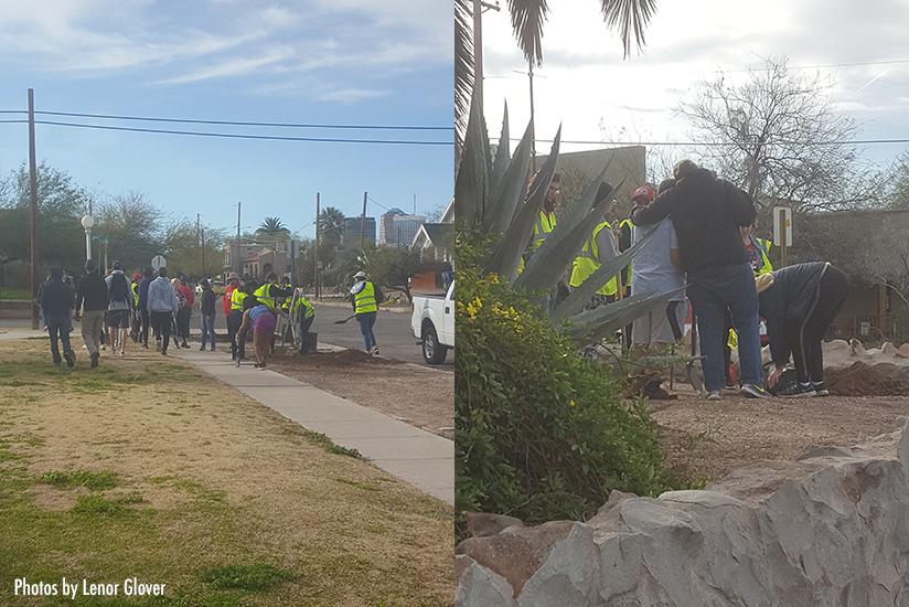 WUNA tree planting Feb 2019