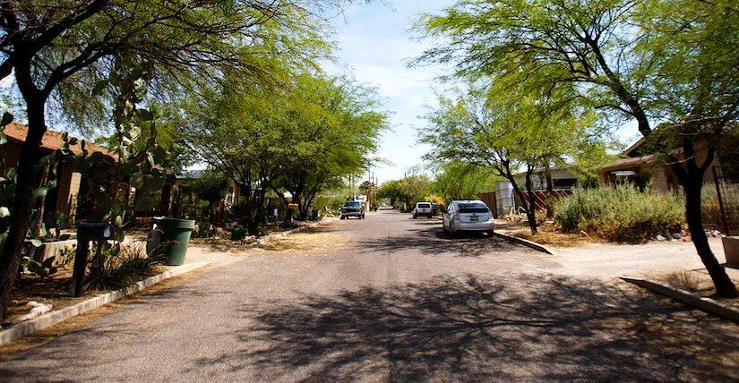 Tree-lined Tucson street